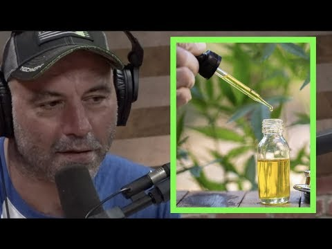 Joe Rogan – CBD is One of the Best Things I've Ever Tried for Anxiety